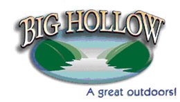 Big_Hollow_Logo.png