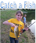 Catch a Fish.png