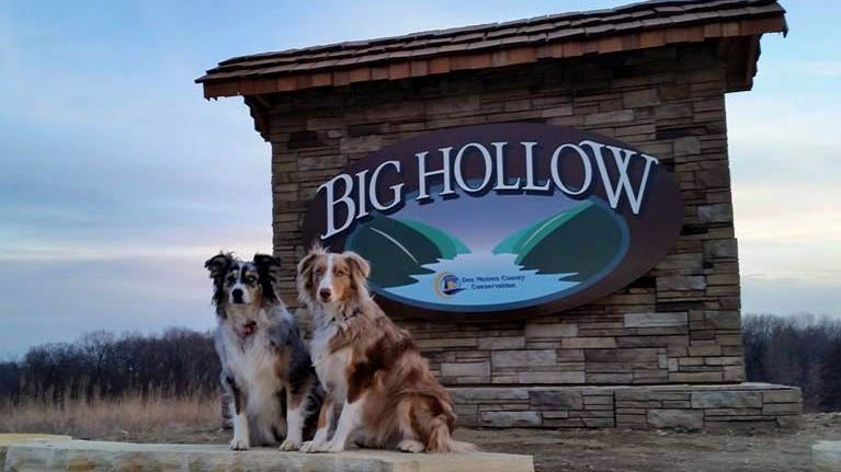 Dogs on BH Sign