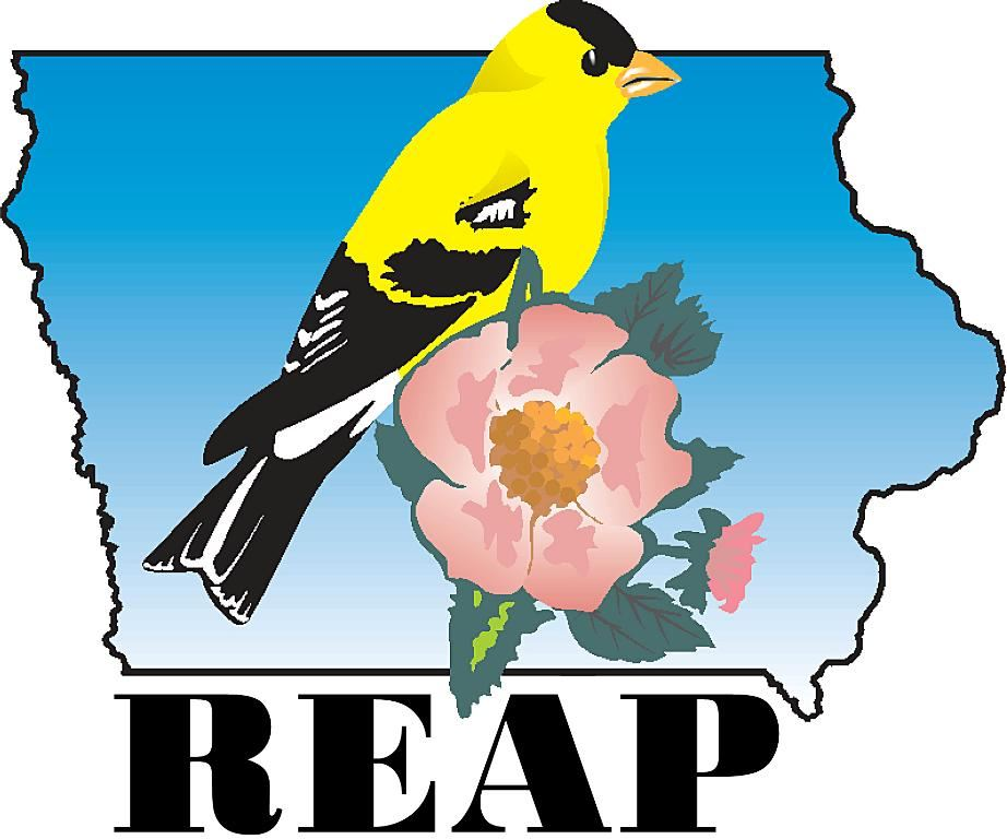 REAP logo Opens in new window