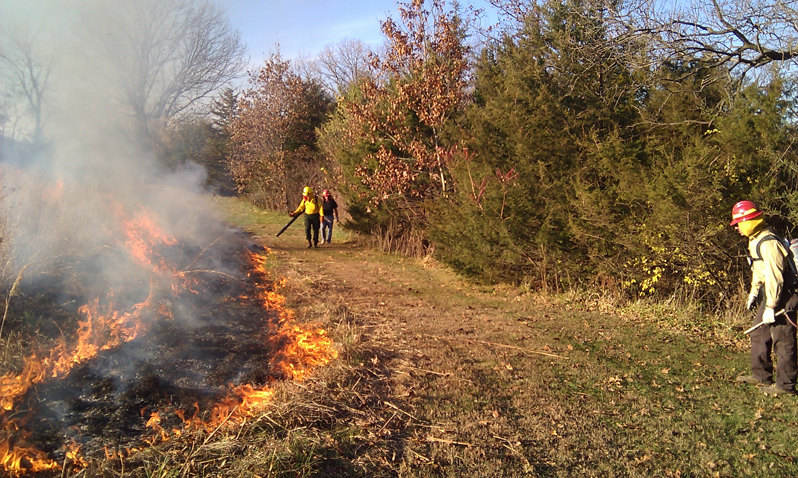Prescribed fire